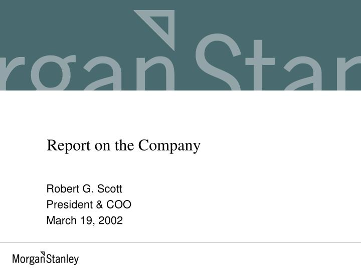 Report on the company