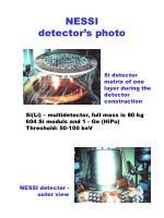 nessi detector s photo
