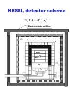 nessi detector scheme