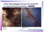 wide field infrared surveys are essential to study the local universe 2mass
