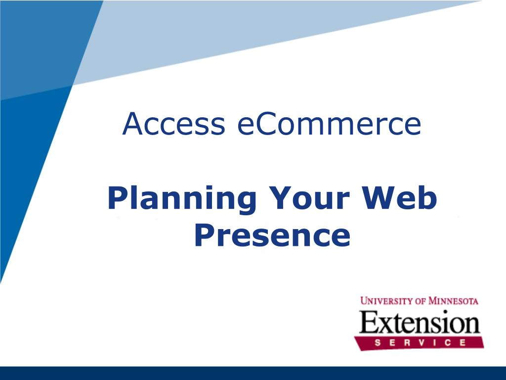 access ecommerce planning your web presence l.