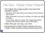 file size digital video tradeoff