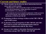 current and future studies