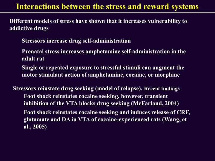 Interactions between the stress and reward systems
