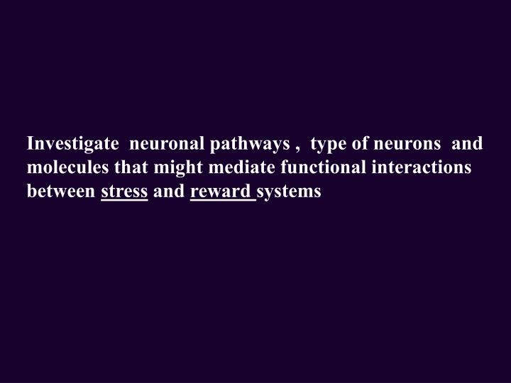 Investigate  neuronal pathways ,  type of neurons  and  molecules that might mediate functional interactions between