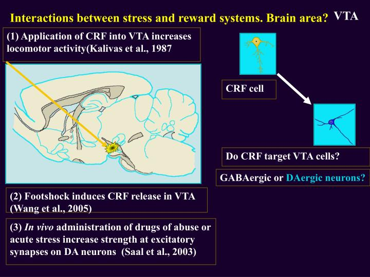 Interactions between stress and reward systems. Brain area?