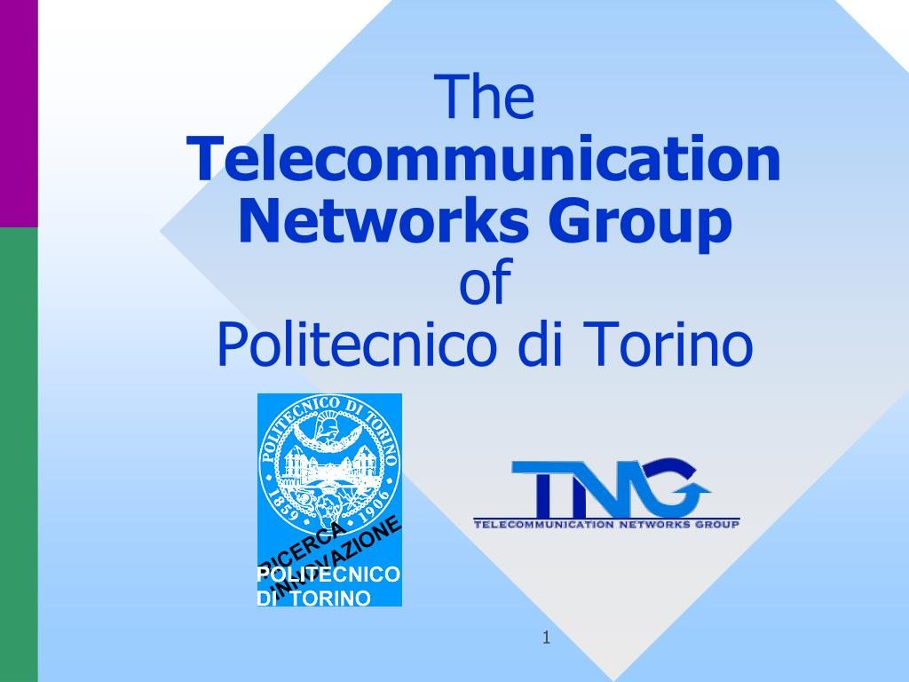 the telecommunication networks group of politecnico di torino l.