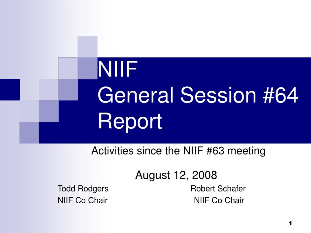 niif general session 64 report activities since the niif 63 meeting l.