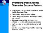 promoting public access t elecentre success factors