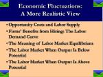 economic fluctuations a more realistic view