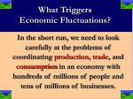 what triggers economic fluctuations20