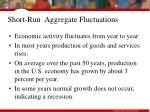 short run aggregate fluctuations