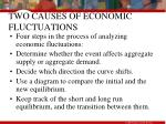 two causes of economic fluctuations