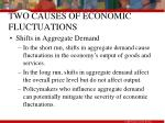 two causes of economic fluctuations55