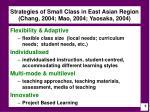 strategies of small class in east asian region chang 2004 mao 2004 yaosaka 2004