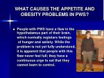 what causes the appetite and obesity problems in pws