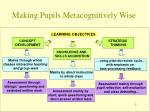 making pupils metacognitively wise