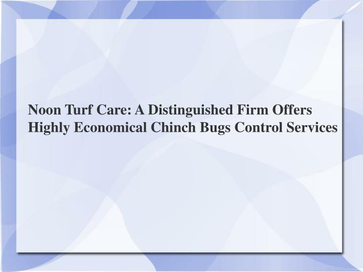 Noon Turf Care: A Distinguished Firm Offers Highly Economical Chinch Bugs Control Services