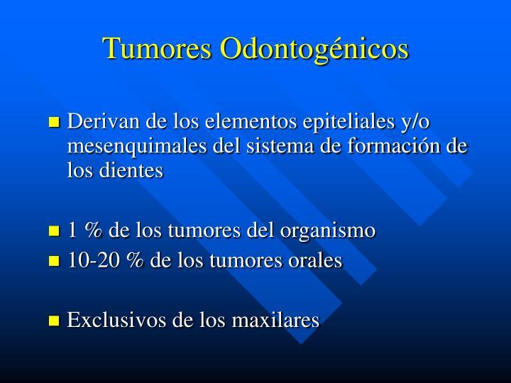 Tumores odontog nicos3