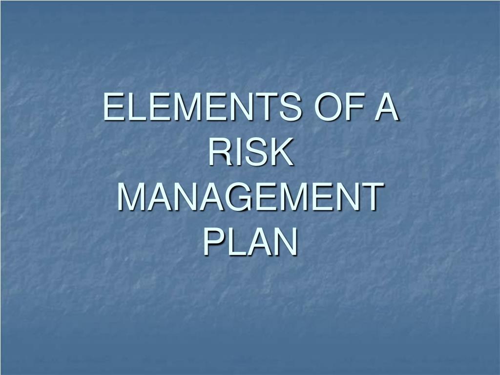 elements of a risk management plan l.