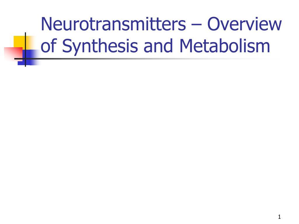 Image Result For Metabolism Definitiona