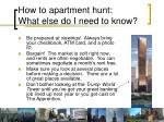 how to apartment hunt what else do i need to know
