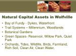 natural capital assets in wolfville