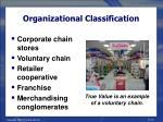 organizational classification22