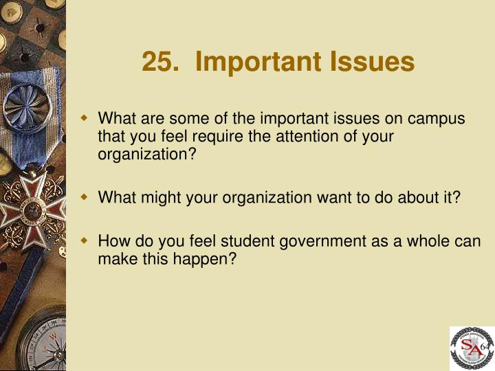 25.  Important Issues