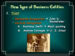 new type of business entities24
