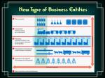 new type of business entities26