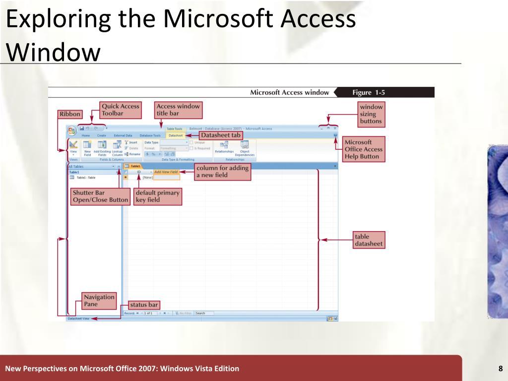 Exploring the Microsoft Access Window