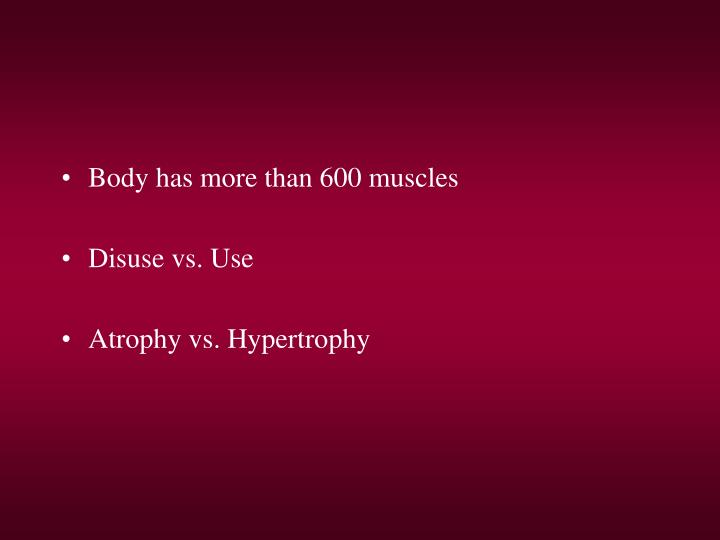 Body has more than 600 muscles