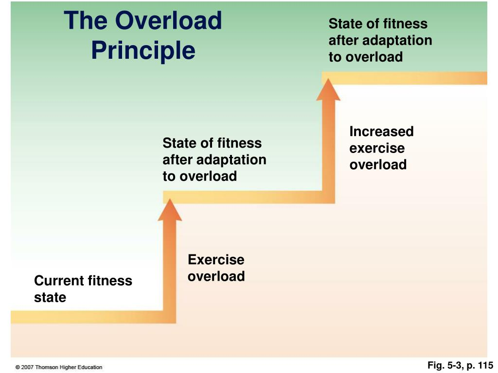 State of fitness after adaptation to overload