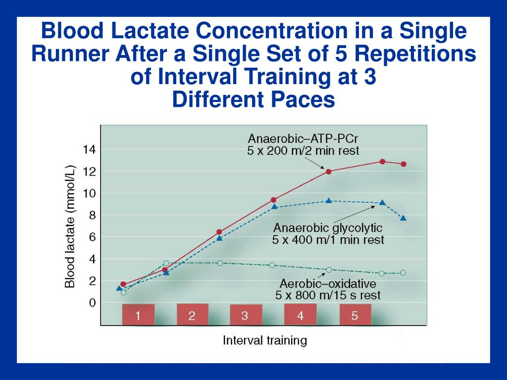 Blood Lactate Concentration in a Single Runner After a Single Set of 5 Repetitions of Interval Training at 3
