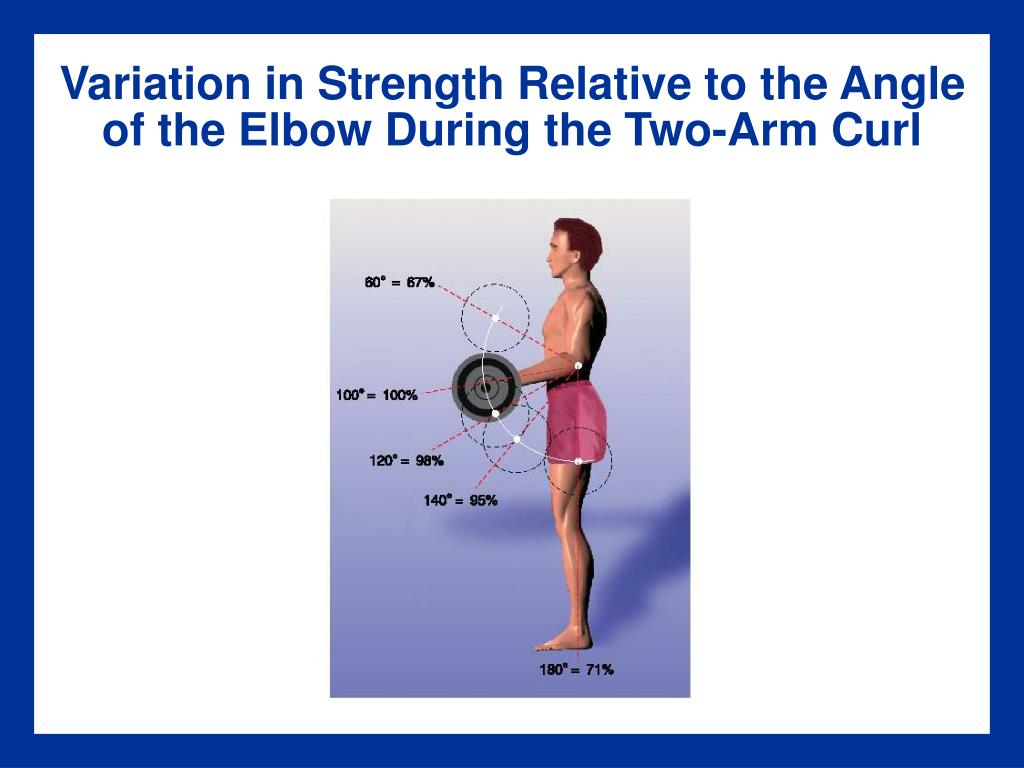 Variation in Strength Relative to the Angle of the Elbow During the Two-Arm Curl