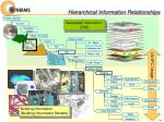 hierarchical information relationships