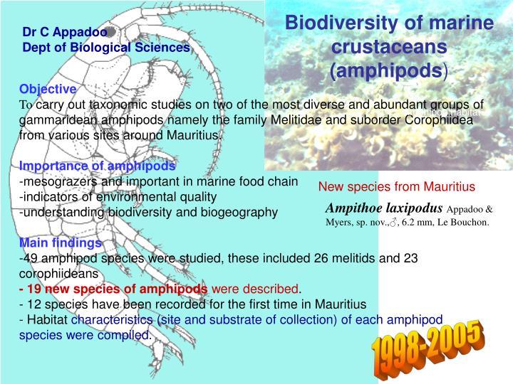 Biodiversity of marine crustaceans amphipods