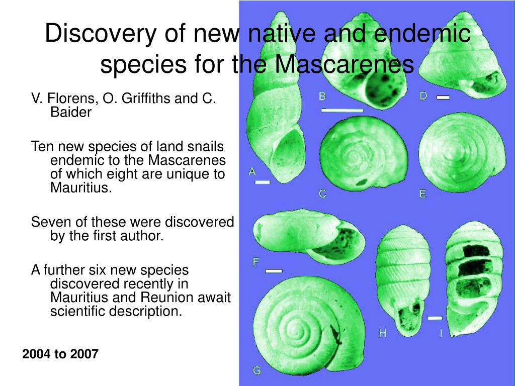 Discovery of new native and endemic species for the Mascarenes