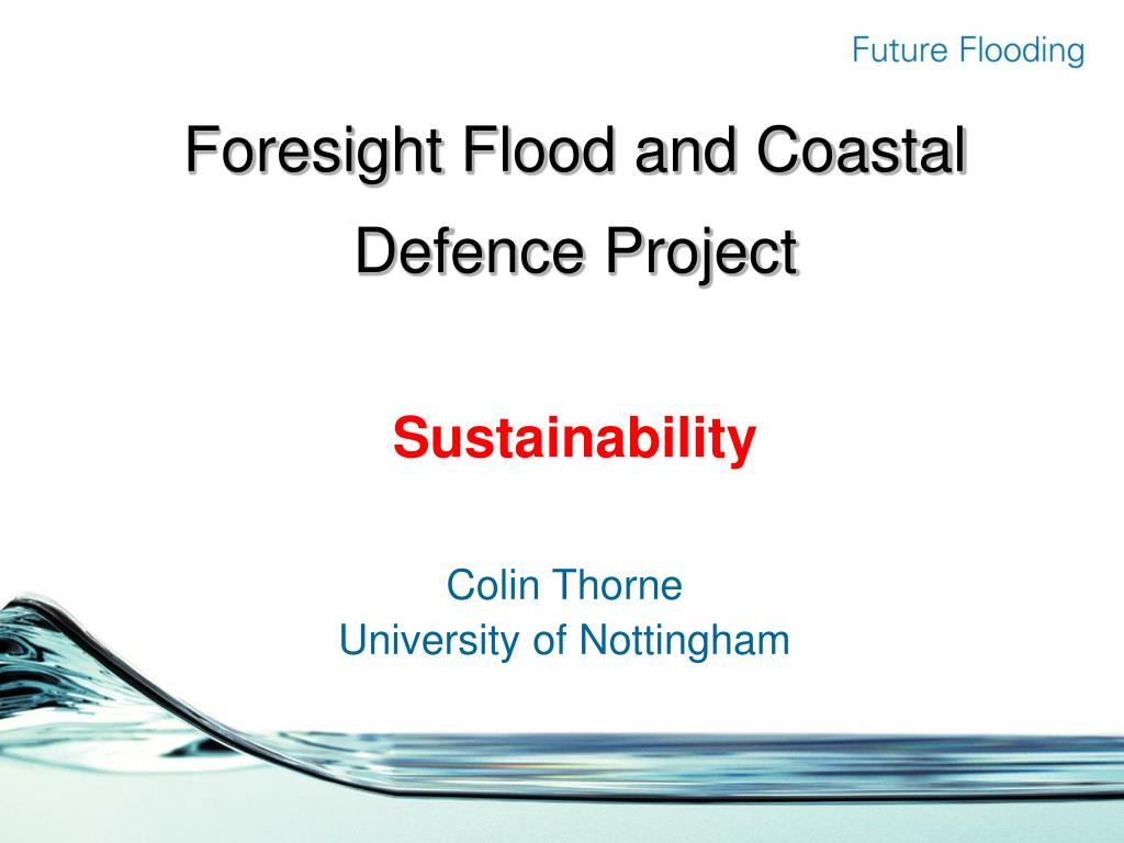Foresight Flood and Coastal Defence Project
