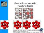 from volume to mesh marching cubes60