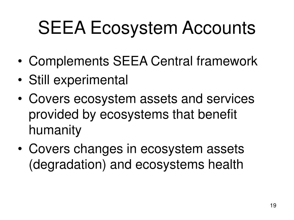 SEEA Ecosystem Accounts