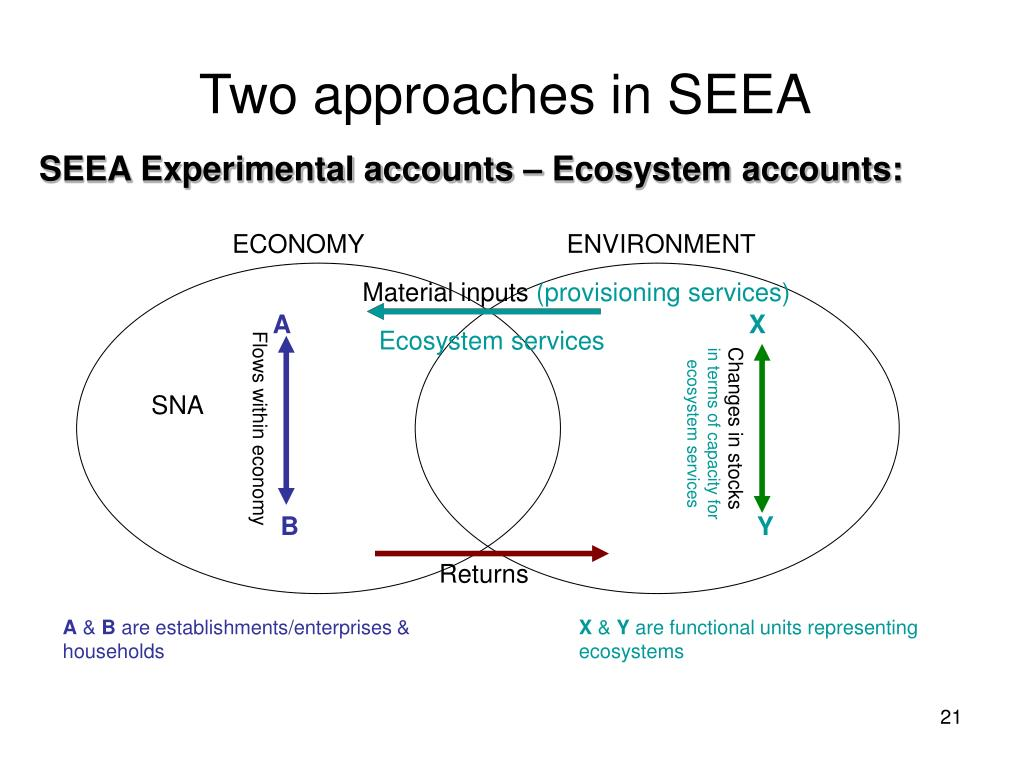 Two approaches in SEEA