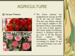 agriculture34