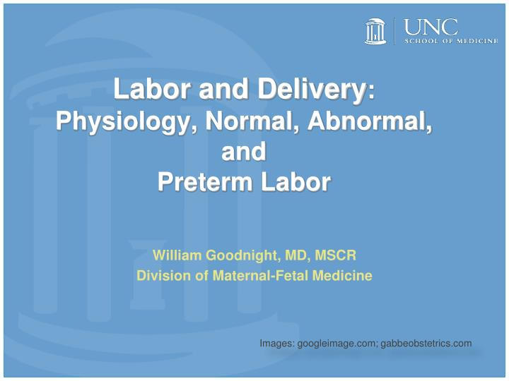 labor and delivery physiology normal abnormal and preterm labor