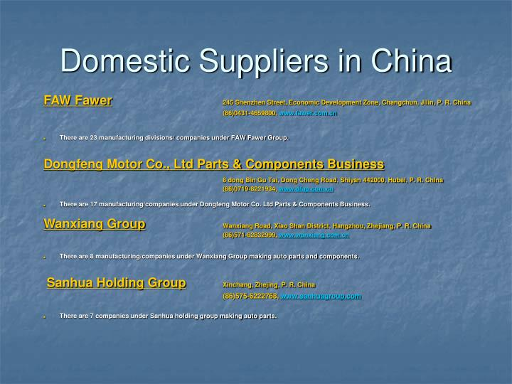 Domestic Suppliers in China