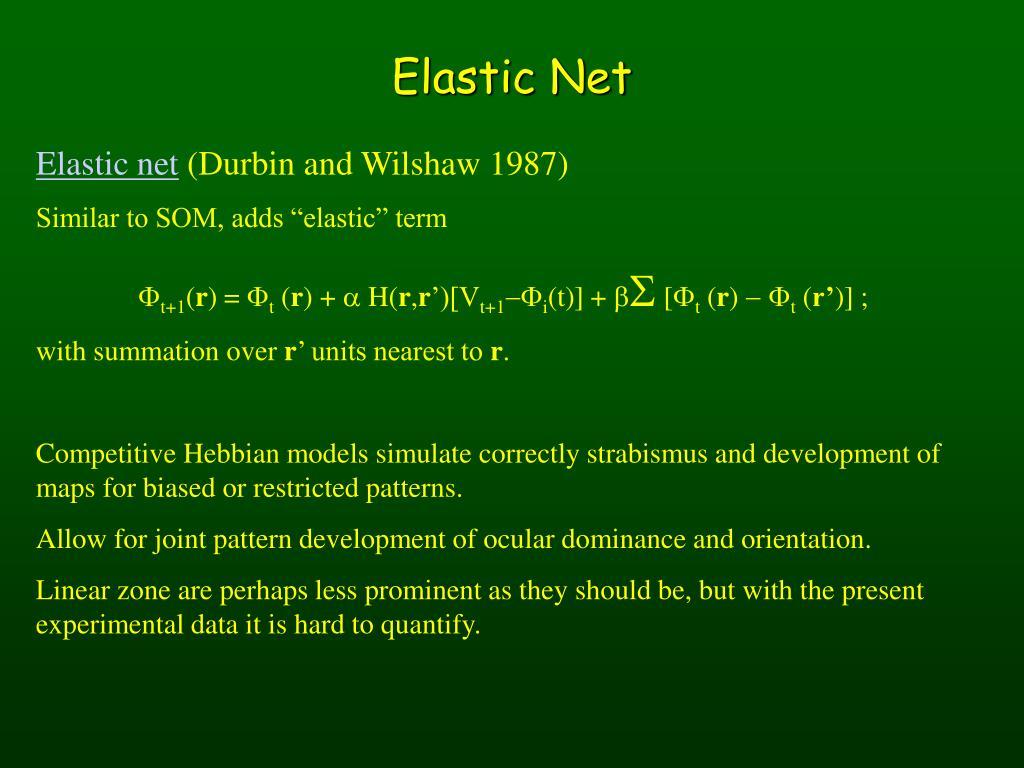 Elastic Net