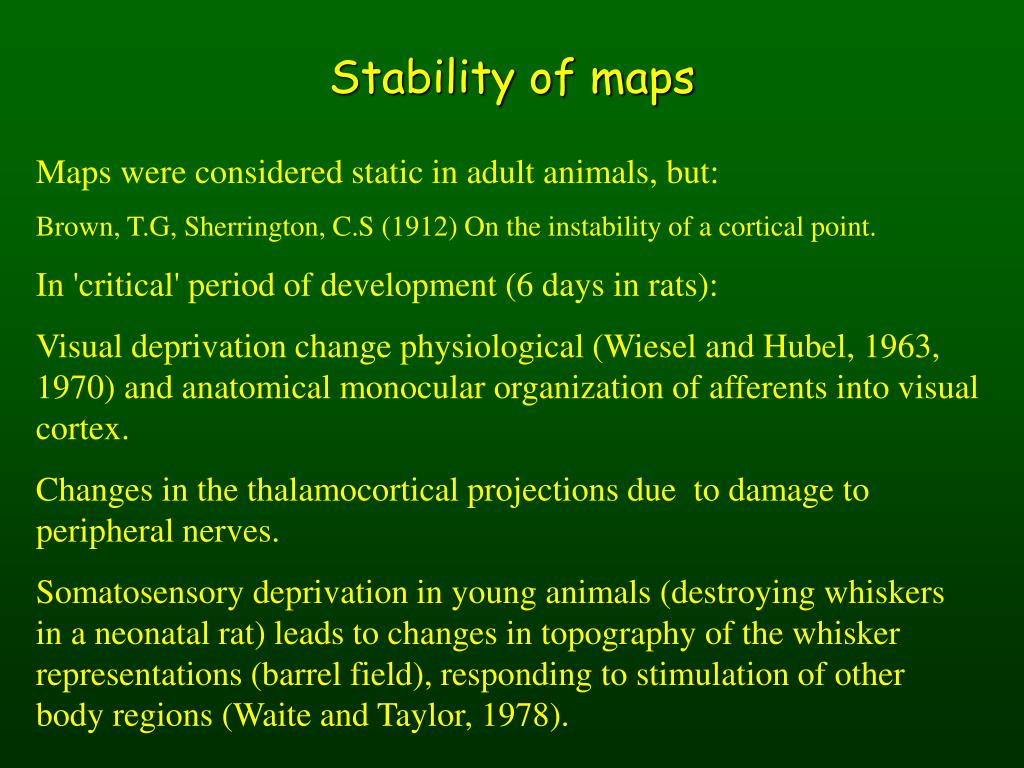 Stability of maps