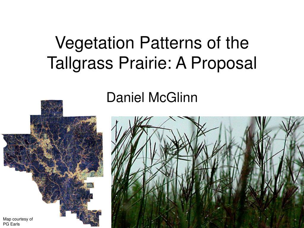 Vegetation Patterns of the Tallgrass Prairie: A Proposal