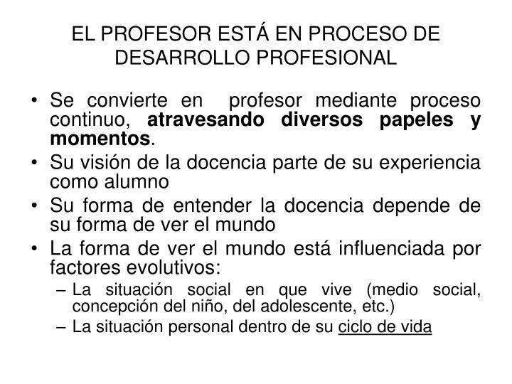 EL PROFESOR ESTÁ EN PROCESO DE DESARROLLO PROFESIONAL